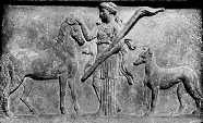 Greyhound, greyhound history,